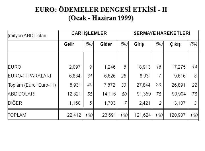 EURO: ÖDEMELER DENGESİ ETKİSİ - II