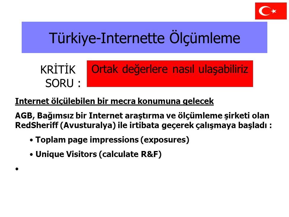 Türkiye-Internette Ölçümleme