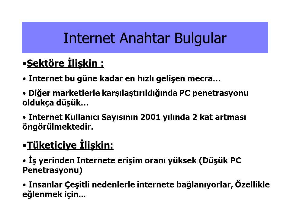 Internet Anahtar Bulgular