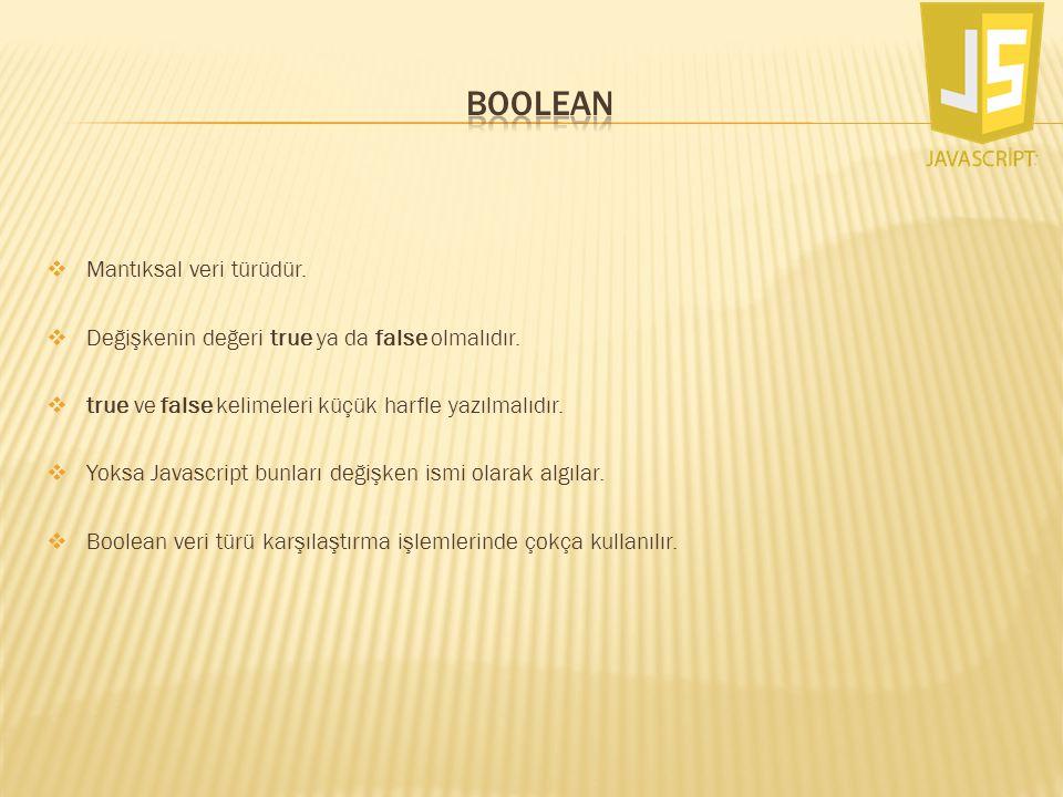 boolean Mantıksal veri türüdür.