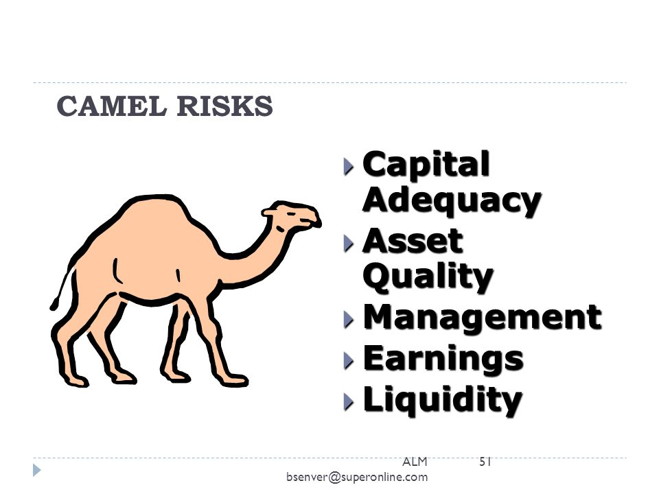 Capital Adequacy Asset Quality Management Earnings Liquidity