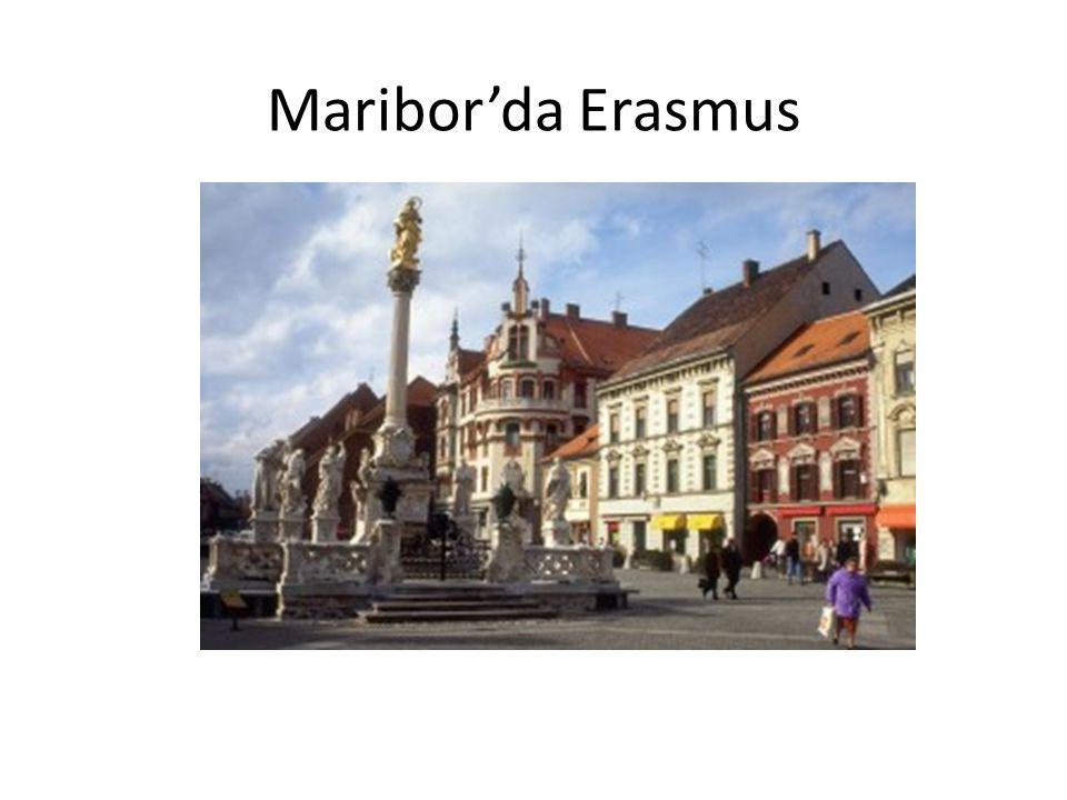 Maribor'da Erasmus