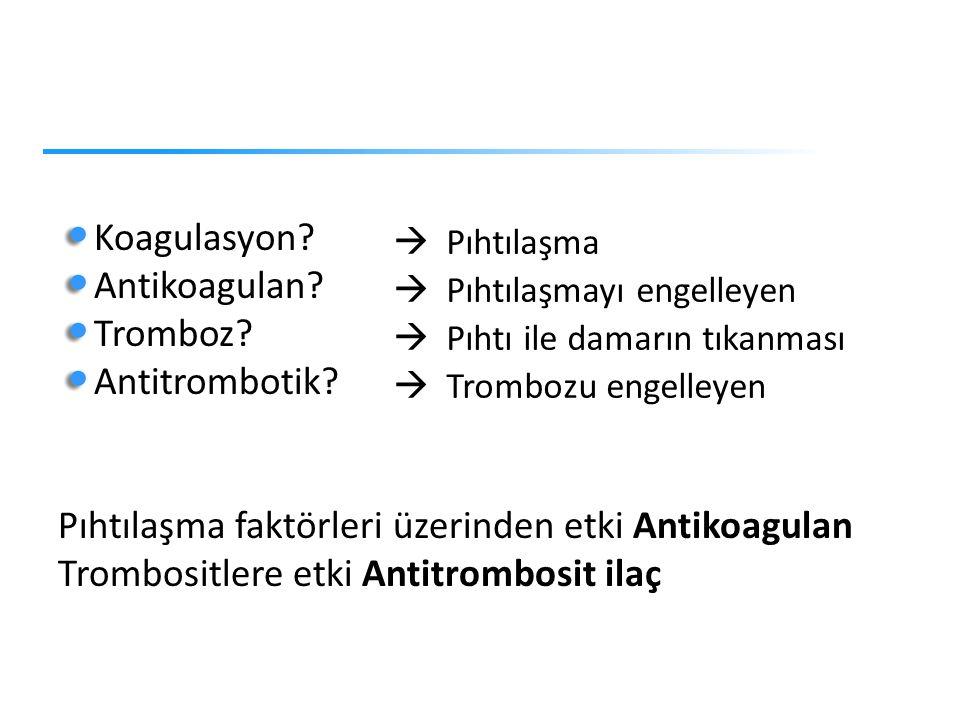 Pıhtılaşma faktörleri üzerinden etki Antikoagulan
