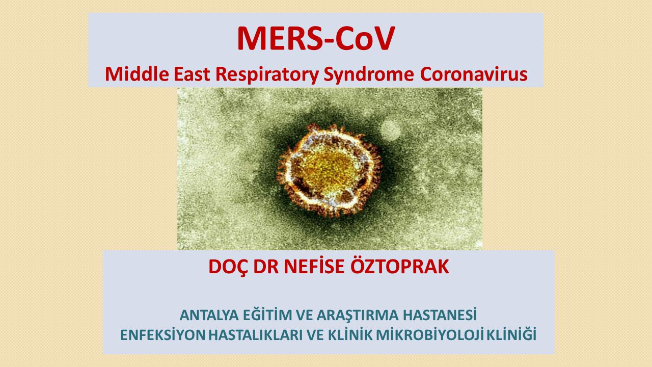 MERS-CoV Middle East Respiratory Syndrome Coronavirus