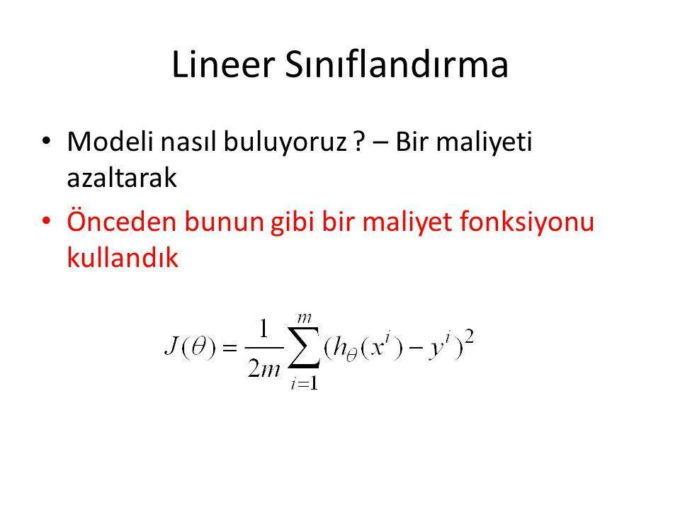 Lineer Sınıflandırma Modeli nasıl buluyoruz – Bir maliyeti azaltarak
