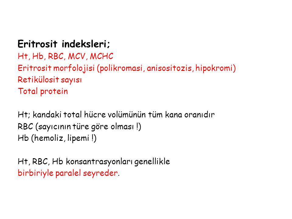 Eritrosit indeksleri;