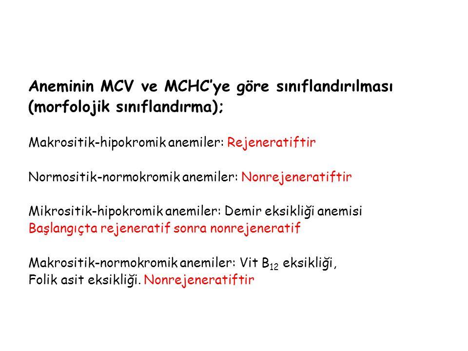 Aneminin MCV ve MCHC'ye göre sınıflandırılması