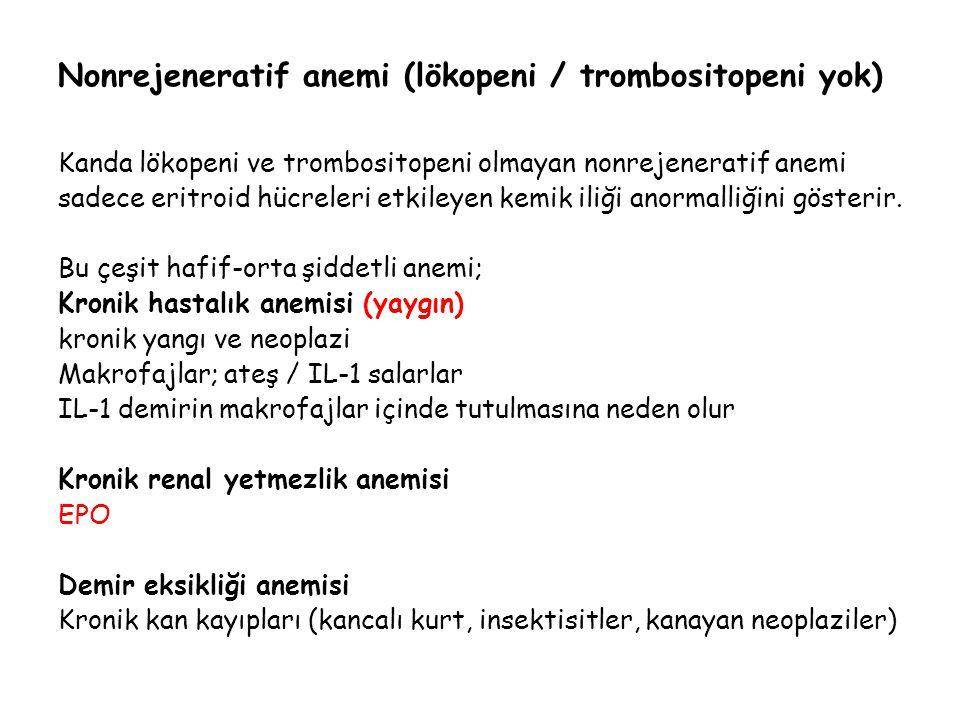 Nonrejeneratif anemi (lökopeni / trombositopeni yok)