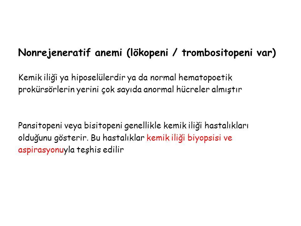 Nonrejeneratif anemi (lökopeni / trombositopeni var)