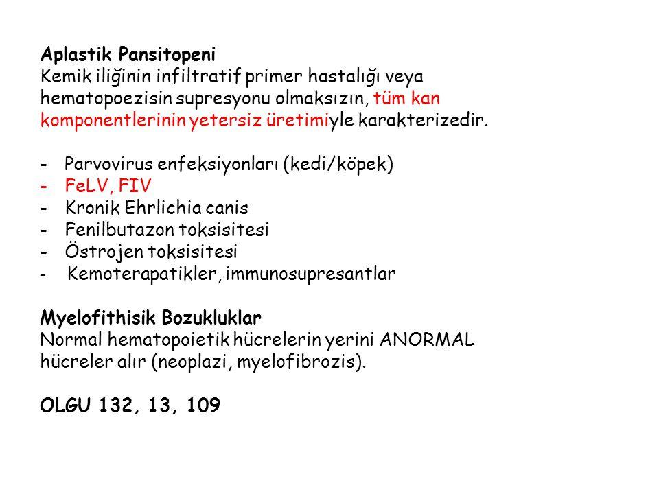 Aplastik Pansitopeni Kemik iliğinin infiltratif primer hastalığı veya. hematopoezisin supresyonu olmaksızın, tüm kan.