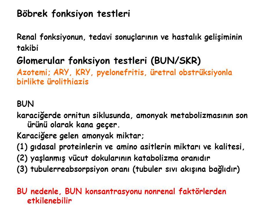 Böbrek fonksiyon testleri