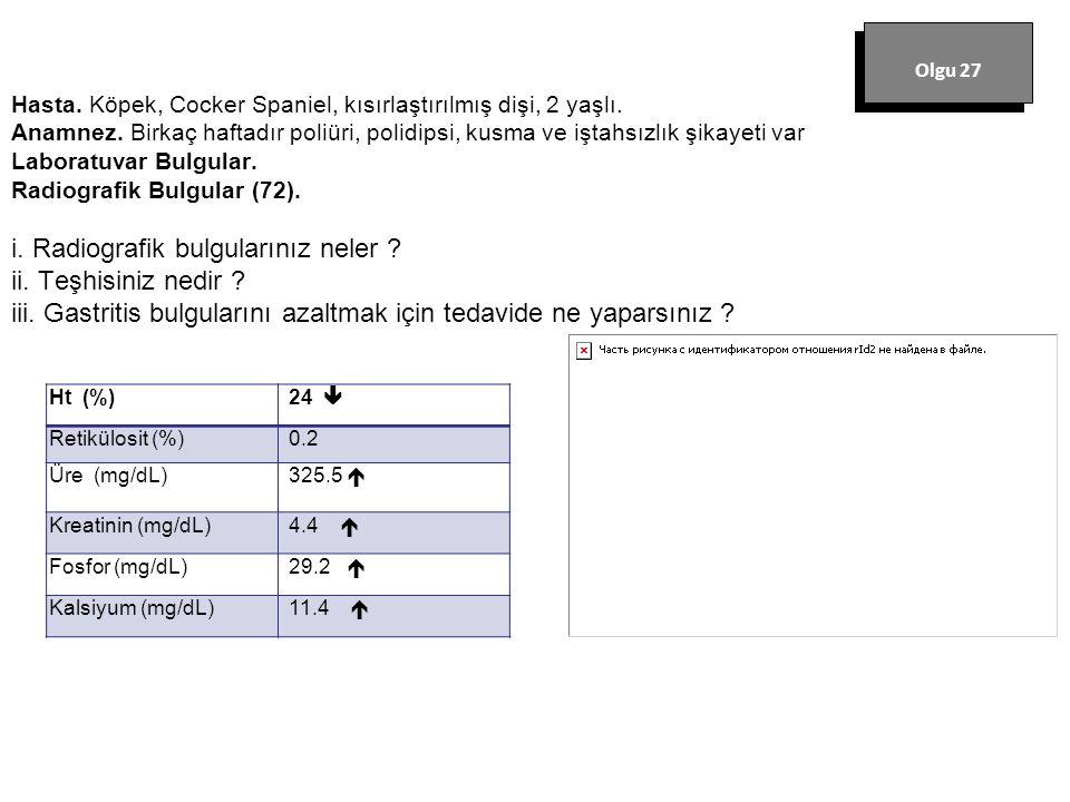 Olgu 27 Ht (%) 24  Retikülosit (%) 0.2 Üre (mg/dL) 325.5 