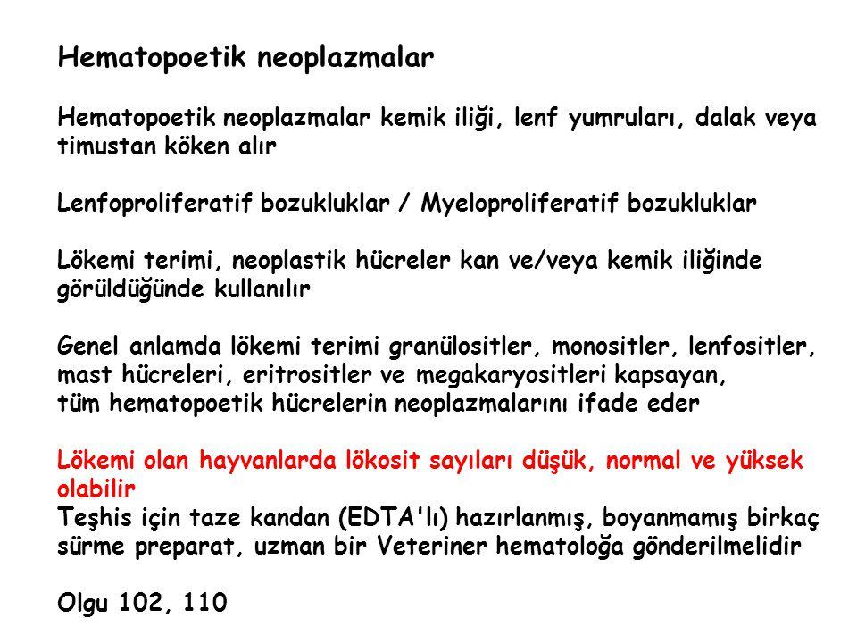 Hematopoetik neoplazmalar