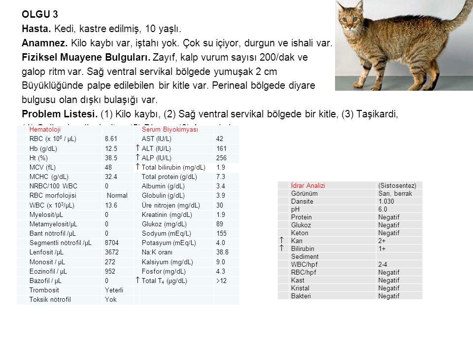 OLGU 3 Hasta. Kedi, kastre edilmiş, 10 yaşlı. Anamnez