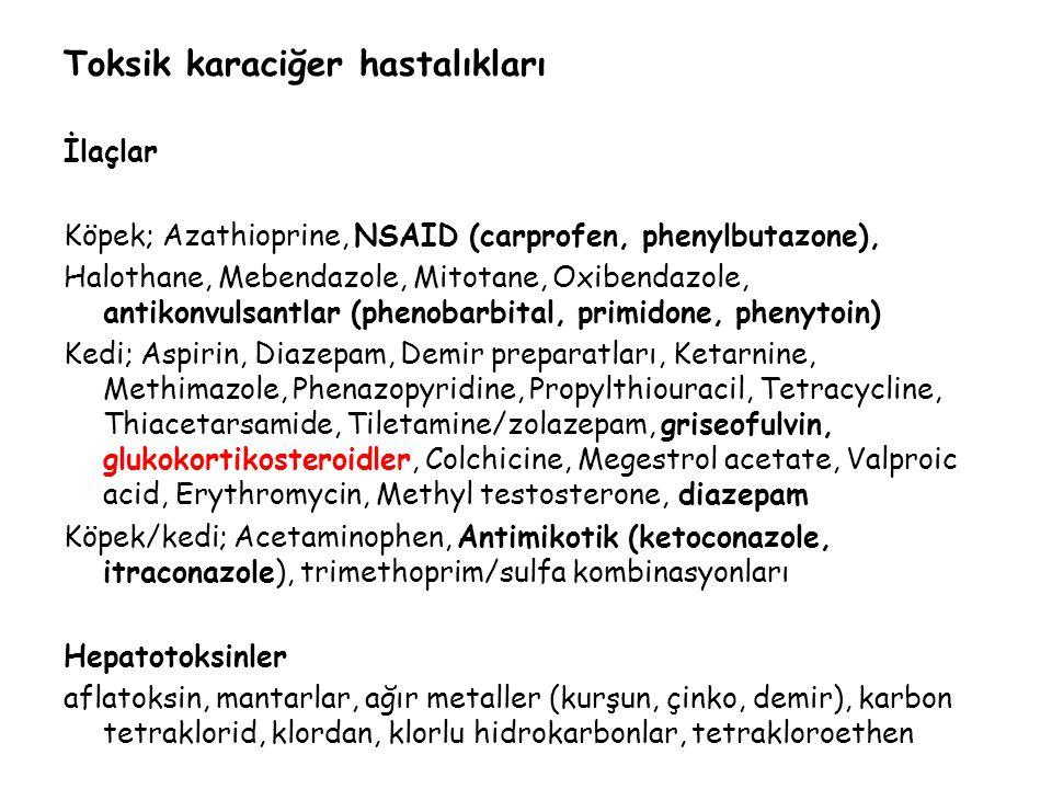 Toksik karaciğer hastalıkları