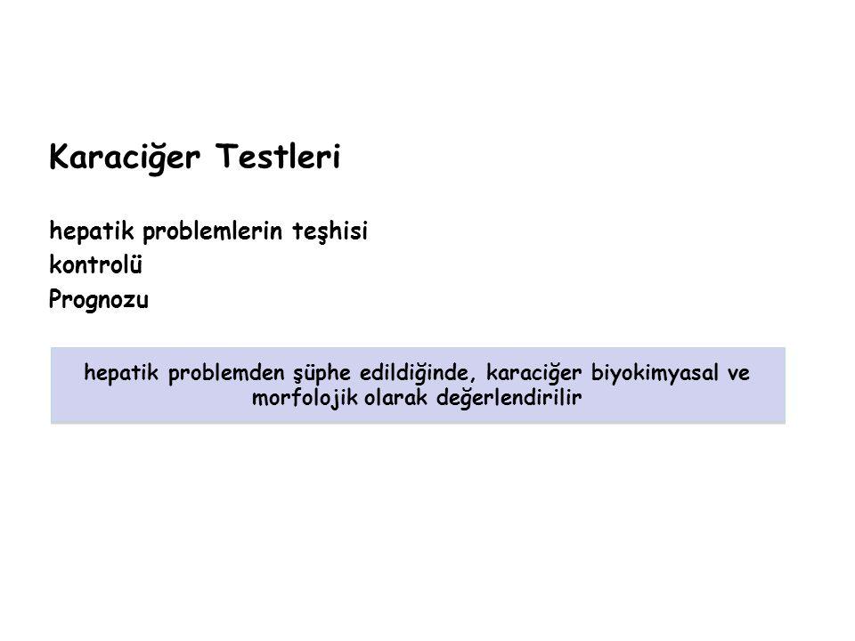 Karaciğer Testleri hepatik problemlerin teşhisi kontrolü Prognozu