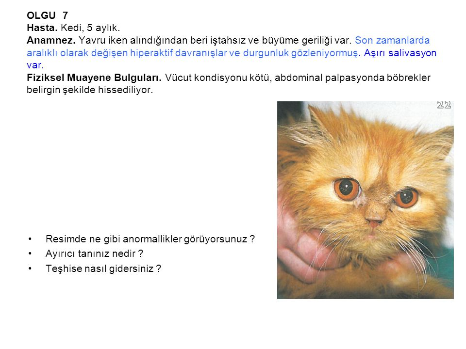 OLGU 7 Hasta. Kedi, 5 aylık. Anamnez