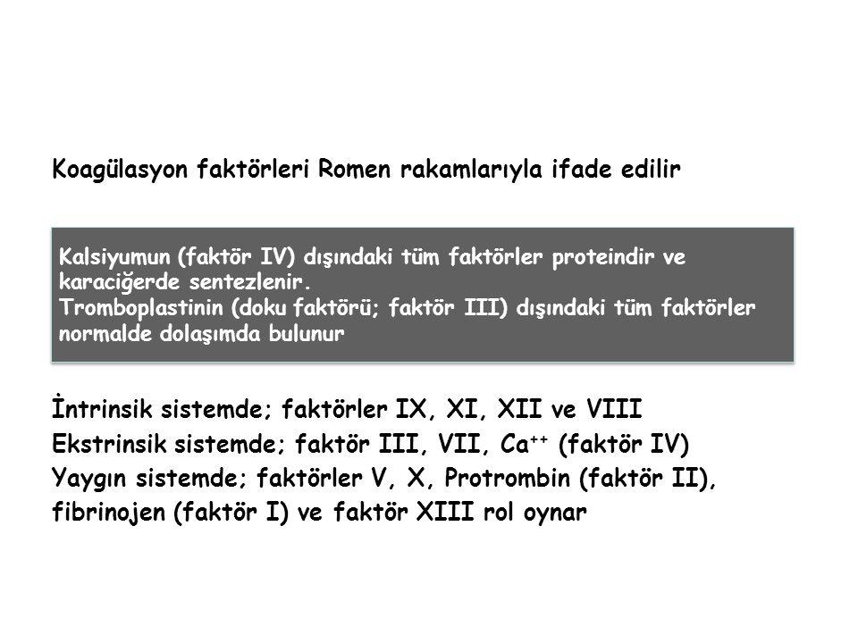 Koagülasyon faktörleri Romen rakamlarıyla ifade edilir