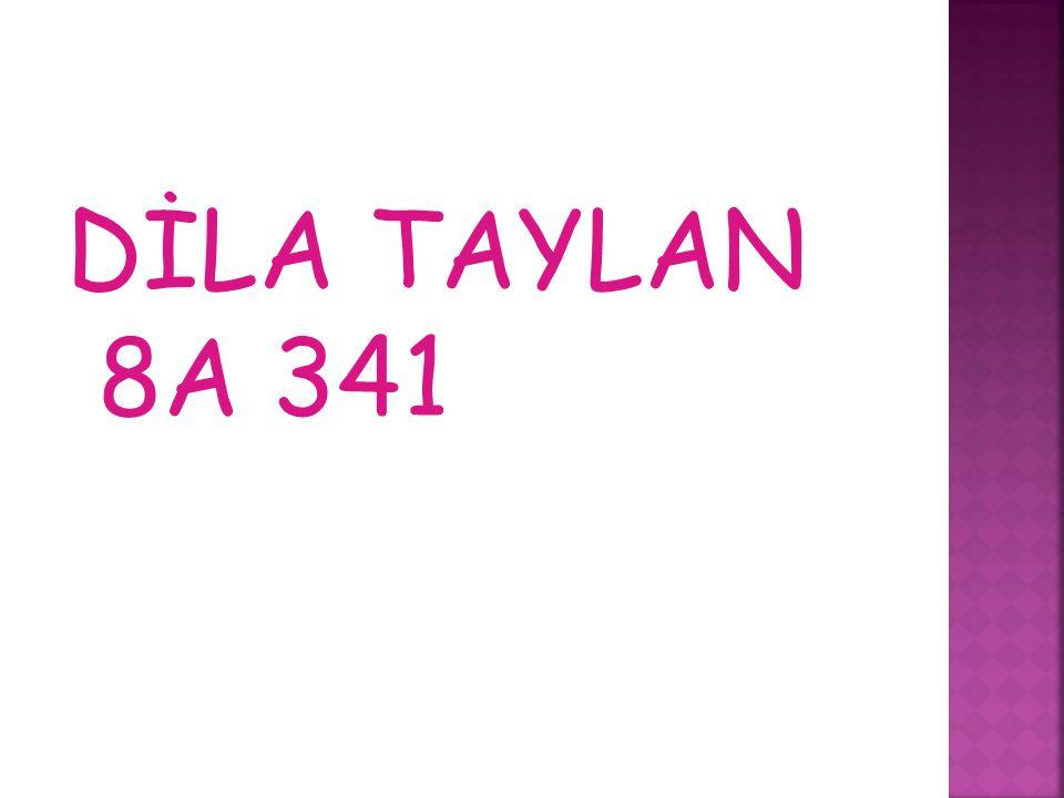 DİLA TAYLAN 8A 341