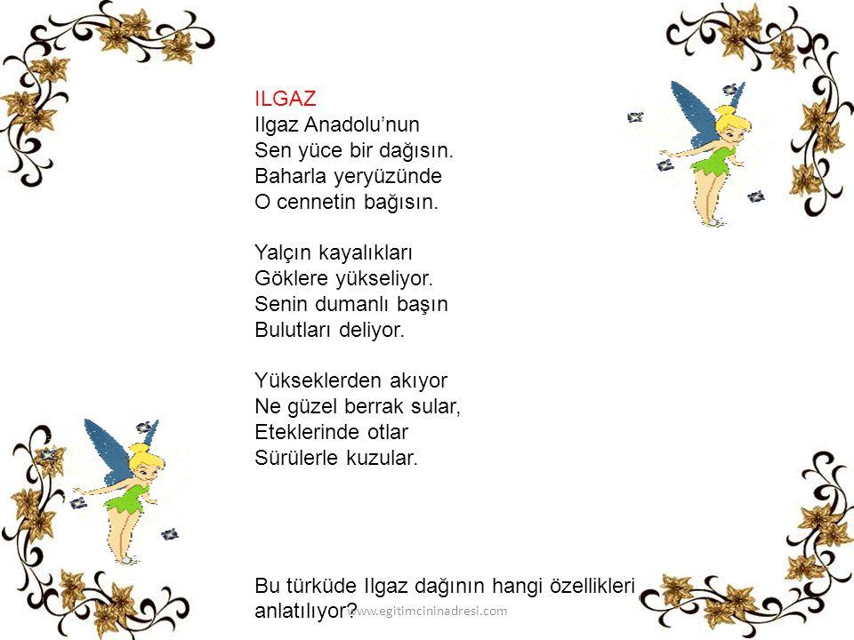 Bu türküde Ilgaz dağının hangi özellikleri anlatılıyor