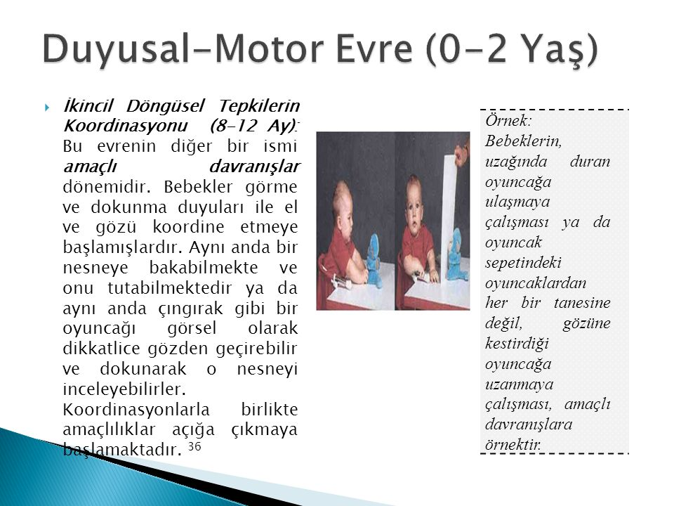Duyusal-Motor Evre (0-2 Yaş)