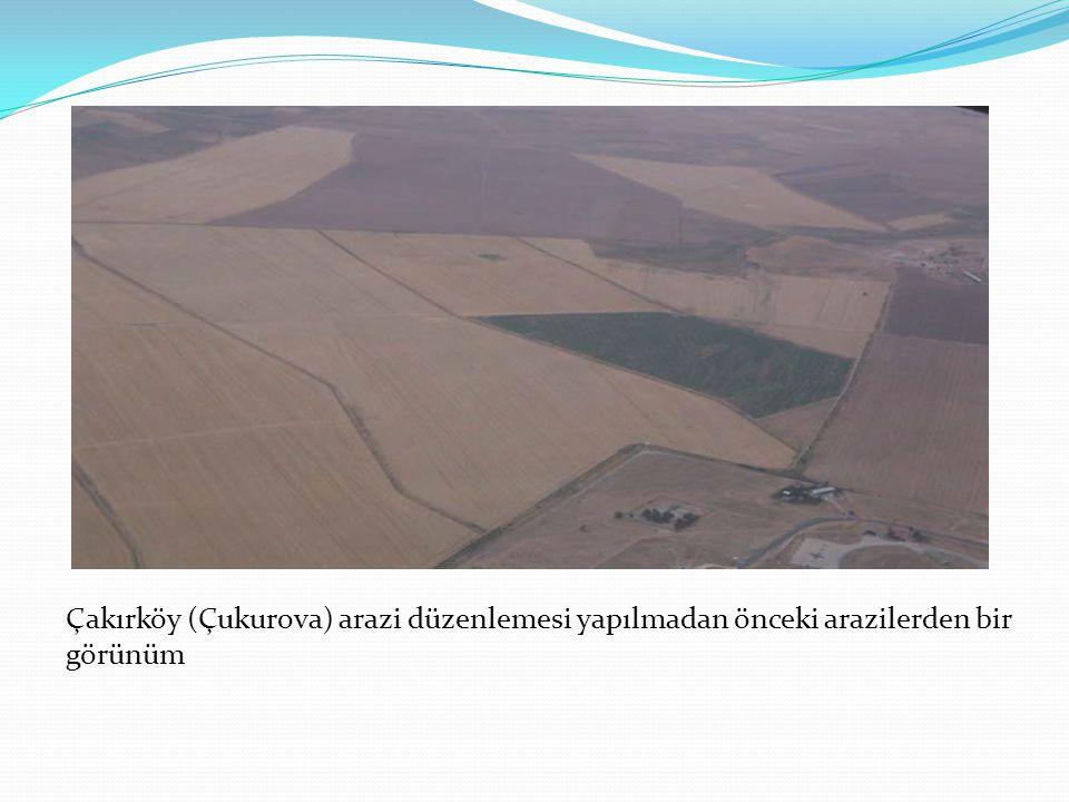 Çakırköy (Çukurova) arazi düzenlemesi yapılmadan önceki arazilerden bir görünüm