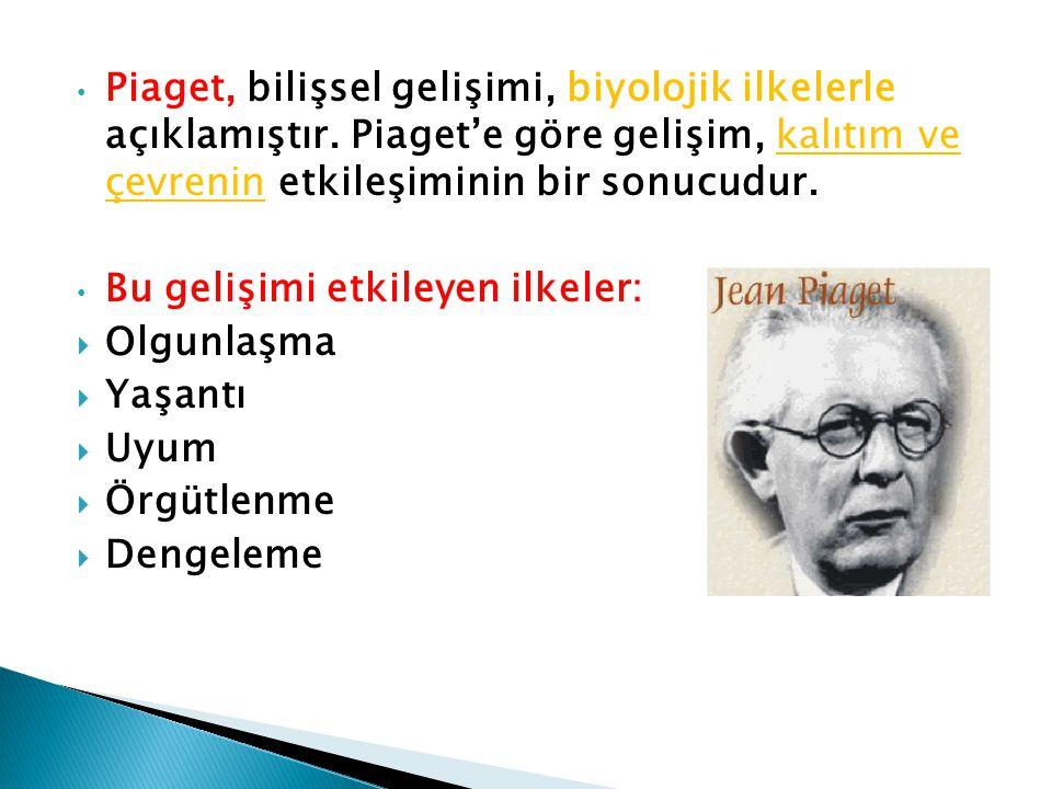 Piaget, bilişsel gelişimi, biyolojik ilkelerle açıklamıştır