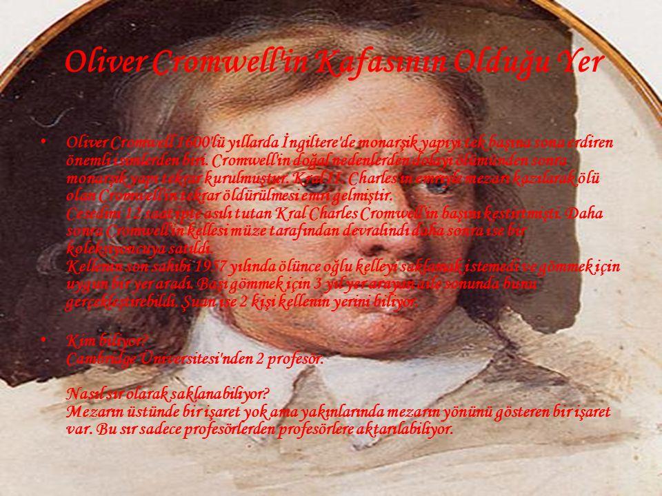 Oliver Cromwell in Kafasının Olduğu Yer