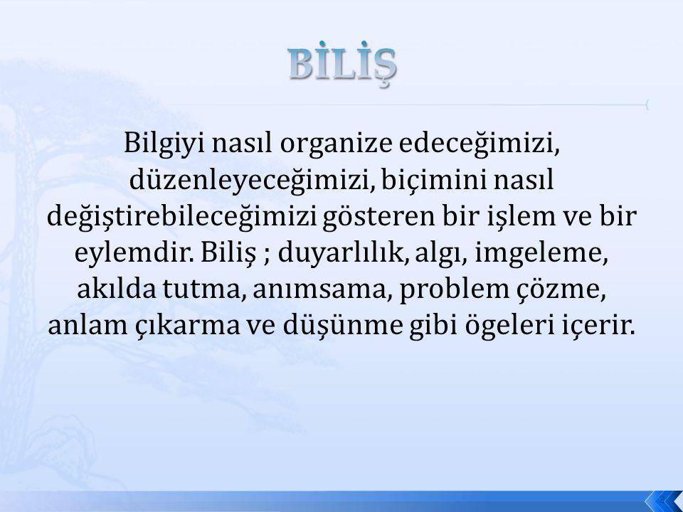BİLİŞ