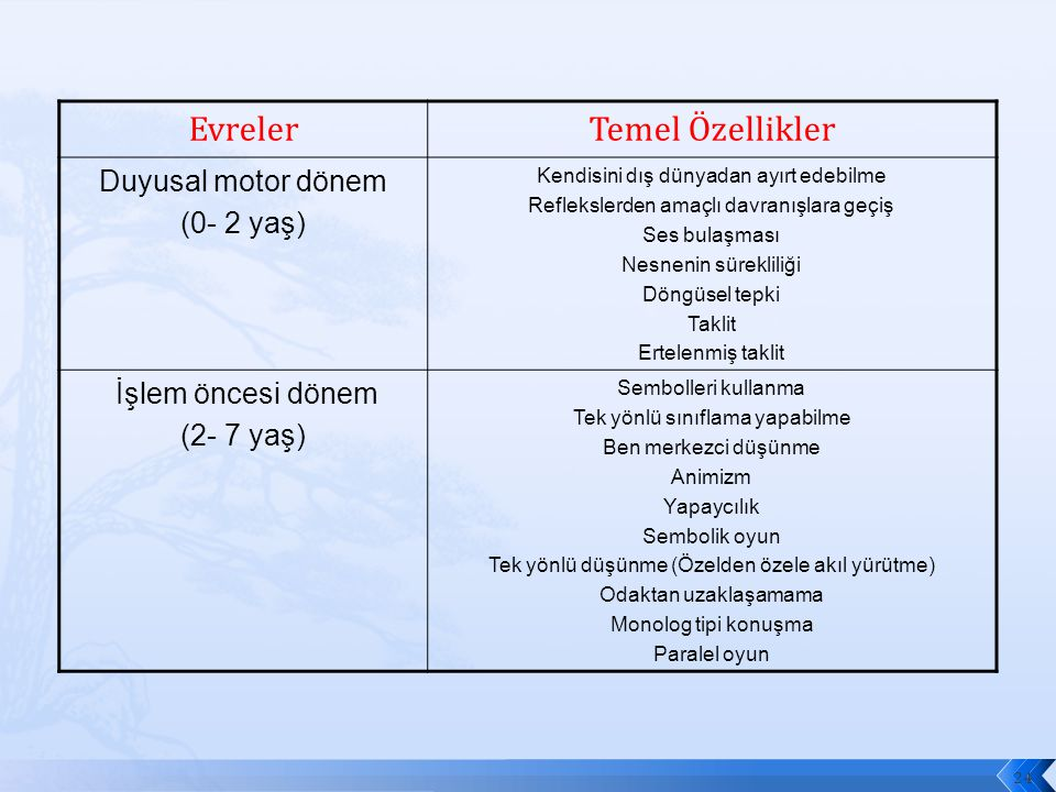 Evreler Temel Özellikler Duyusal motor dönem (0- 2 yaş)