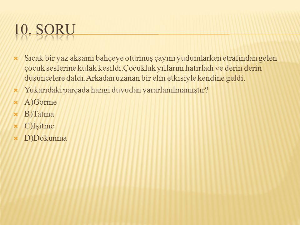 10. SORU