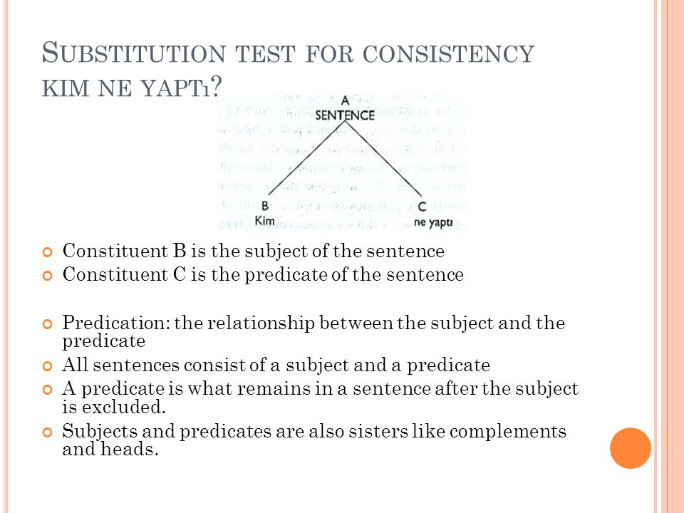 Substitution test for consistency kim ne yaptı