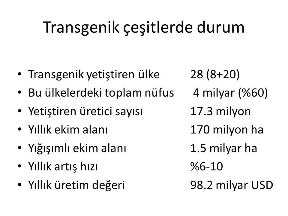 Transgenik çeşitlerde durum