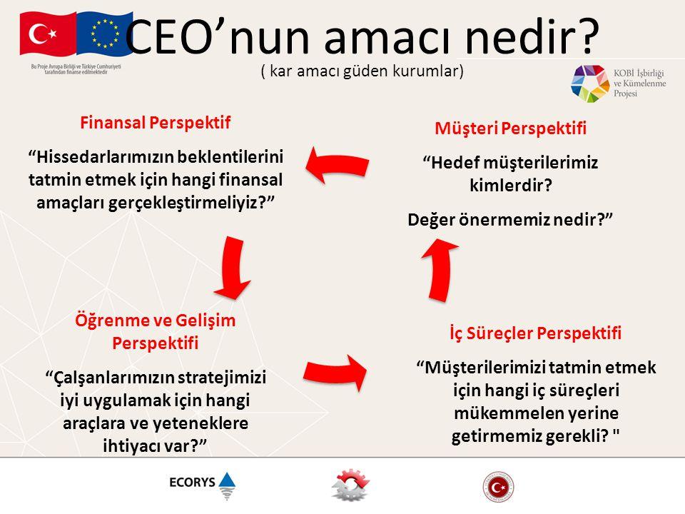 CEO'nun amacı nedir ( kar amacı güden kurumlar)