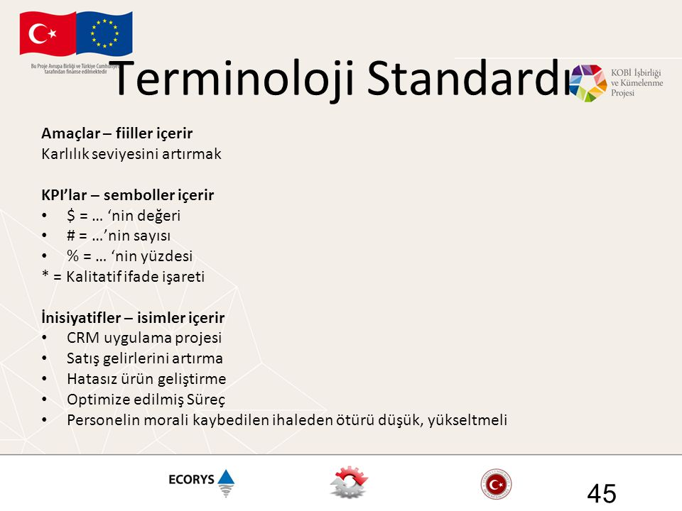 Terminoloji Standardı