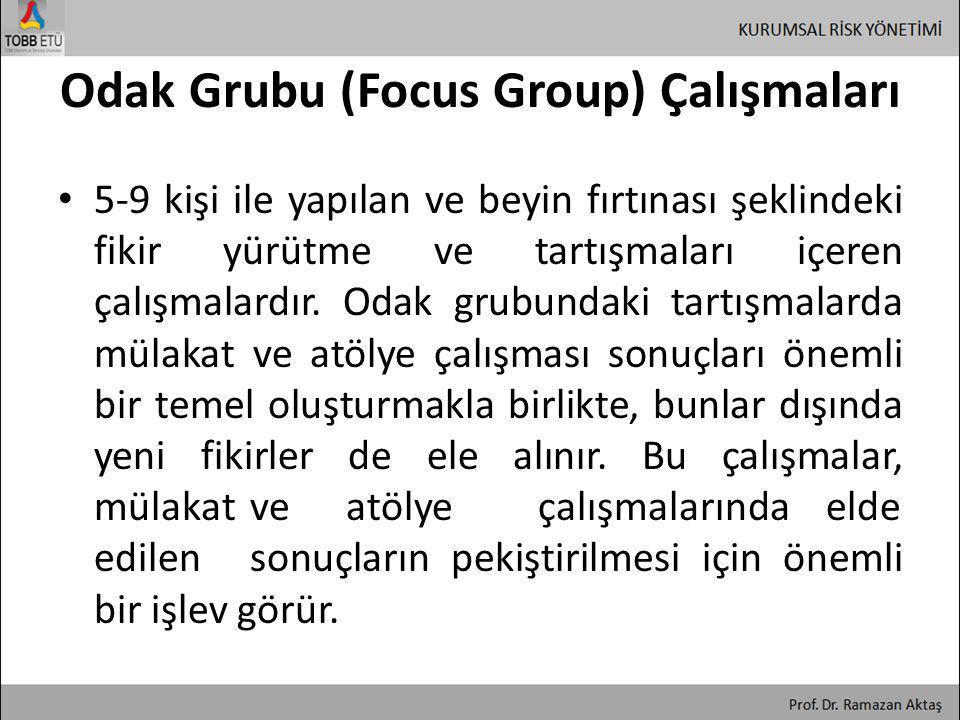 Odak Grubu (Focus Group) Çalışmaları