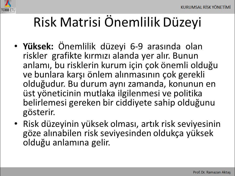 Risk Matrisi Önemlilik Düzeyi