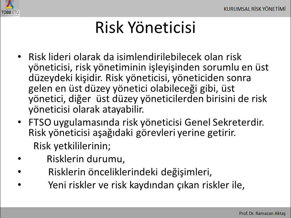 Risk Yöneticisi