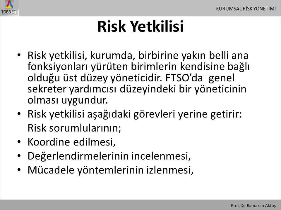 Risk Yetkilisi