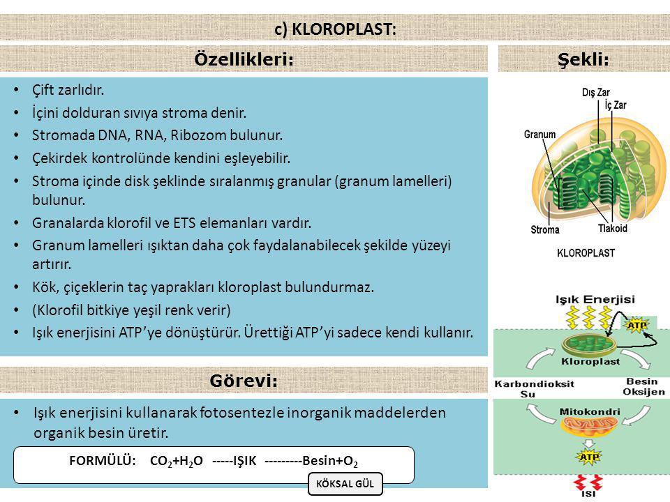 FORMÜLÜ: CO2+H2O -----IŞIK ---------Besin+O2