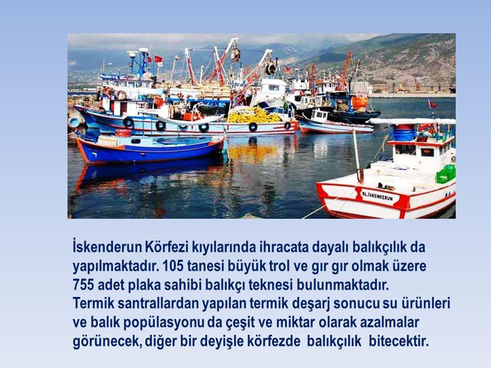 İskenderun Körfezi kıyılarında ihracata dayalı balıkçılık da yapılmaktadır. 105 tanesi büyük trol ve gır gır olmak üzere 755 adet plaka sahibi balıkçı teknesi bulunmaktadır.
