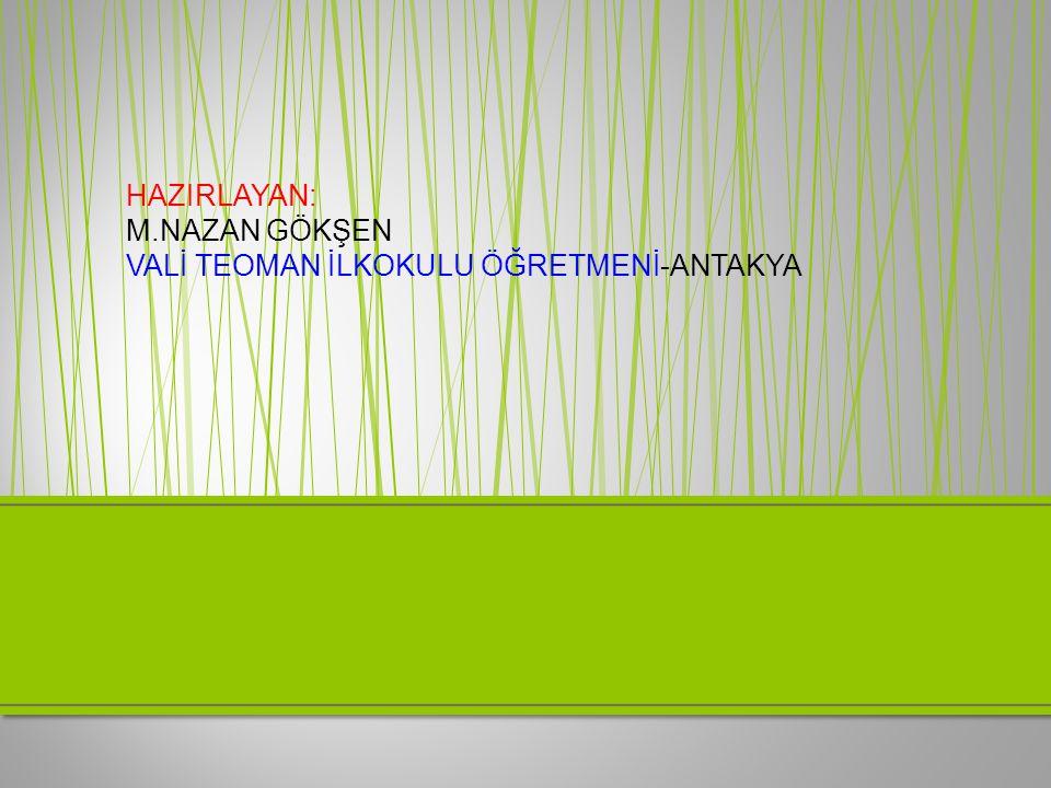 HAZIRLAYAN: M.NAZAN GÖKŞEN VALİ TEOMAN İLKOKULU ÖĞRETMENİ-ANTAKYA