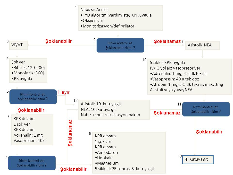 IV/IO yol aç: vasopresor ver Adrenalin: 1 mg, 3-5 dk tekrar