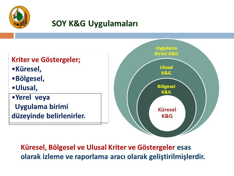 SOY K&G Uygulamaları Kriter ve Göstergeler; Küresel, Bölgesel, Ulusal,