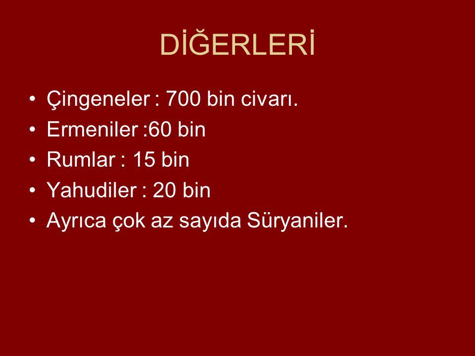 DİĞERLERİ Çingeneler : 700 bin civarı. Ermeniler :60 bin