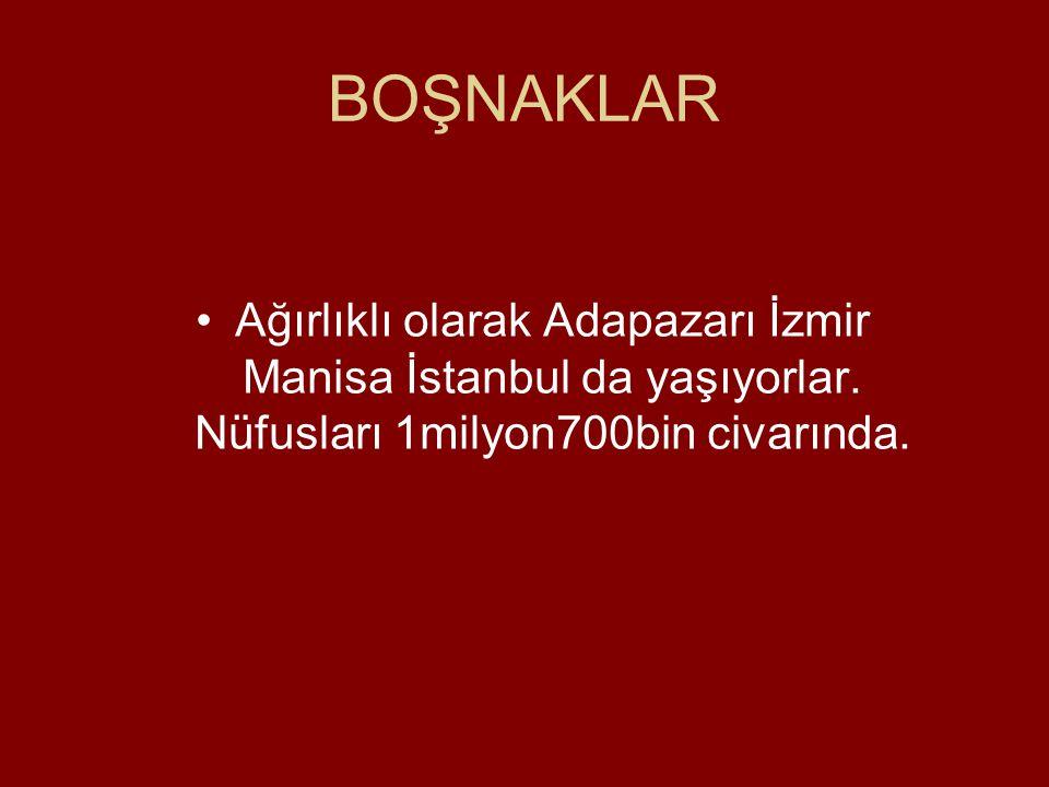 BOŞNAKLAR Ağırlıklı olarak Adapazarı İzmir Manisa İstanbul da yaşıyorlar.