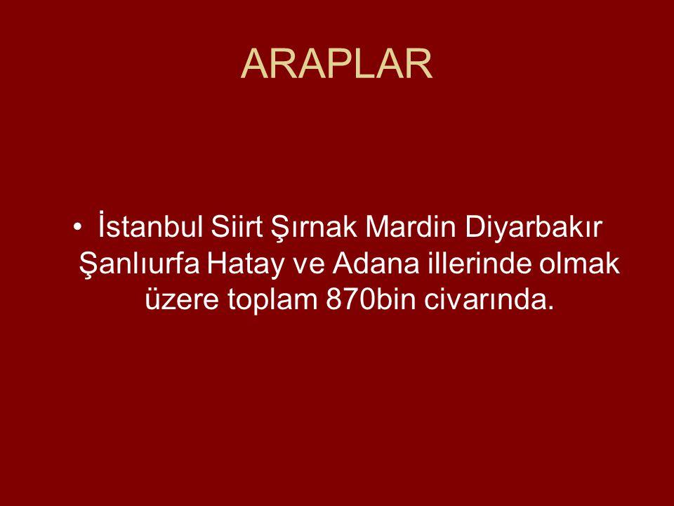 ARAPLAR İstanbul Siirt Şırnak Mardin Diyarbakır Şanlıurfa Hatay ve Adana illerinde olmak üzere toplam 870bin civarında.