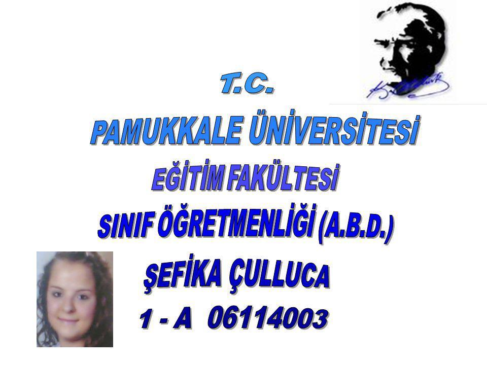 PAMUKKALE ÜNİVERSİTESİ SINIF ÖĞRETMENLİĞİ (A.B.D.)