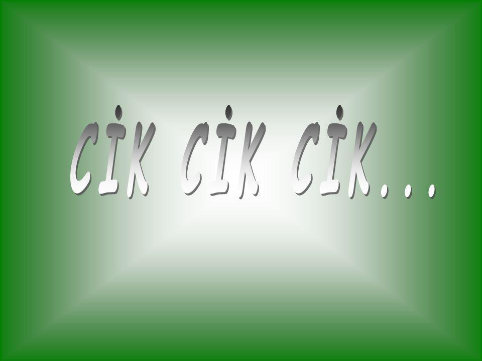 CİK CİK CİK...