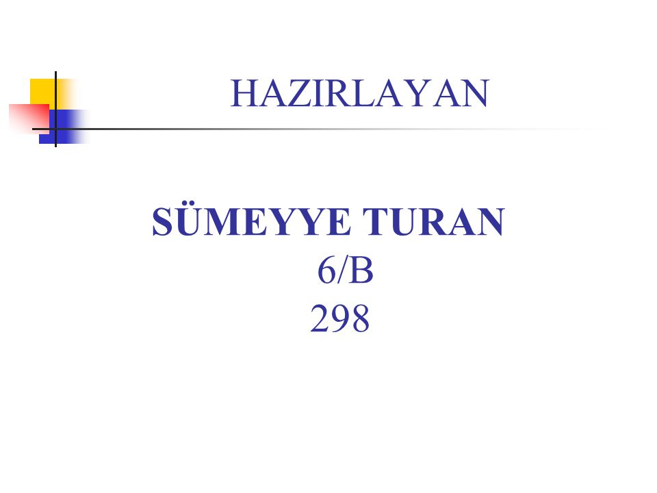 HAZIRLAYAN SÜMEYYE TURAN 6/B 298